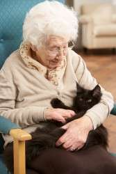 Caregivers for the elderly Edmonton, alberta